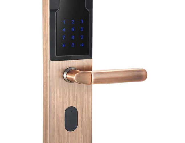ENZA Group Sales   Huge Savings Online Group Buying - image F2017-R-S1-fingerprint-door-lock-650x500 on https://enzagroupsales.com.au
