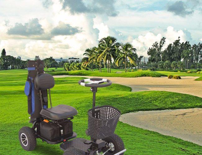 Group Buying - image golf-pic-3-650x500 on https://enzagroupsales.com.au
